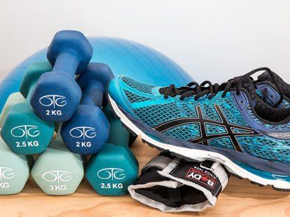 Jokipuistoseuran liikuntakerhot aloittavat toimintansa kesätauon jälkeen